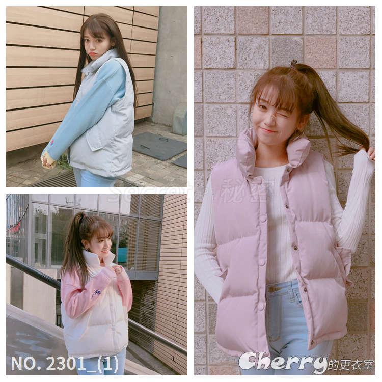 韓版立領單排扣背心百搭口袋外套